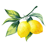 Italian Lemon Essential Oil (FP 110*F)